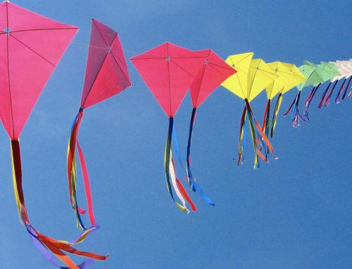 Kite Festival Celebration